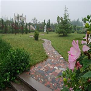 商河县龙泉公墓