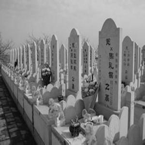 大悟向阳山公墓