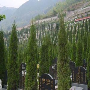 孝昌凤凰山公墓