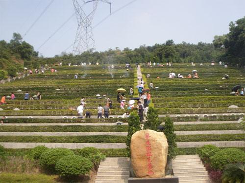 深圳市吉田永久墓园