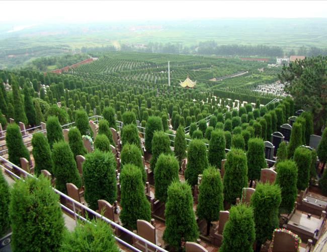 凤凰岭公墓
